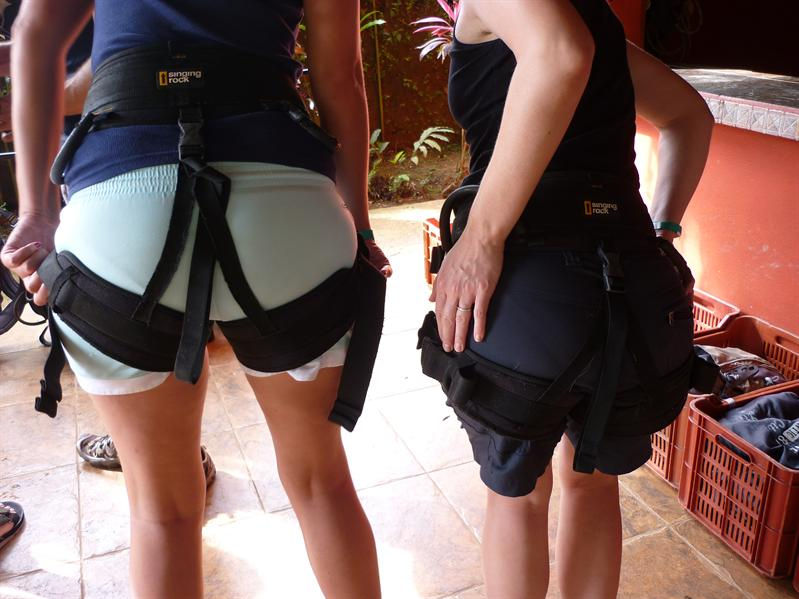 Nice harnesses!