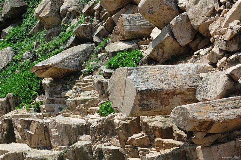 Cannon Rock and Shark Rock 大炮石和鯊魚石