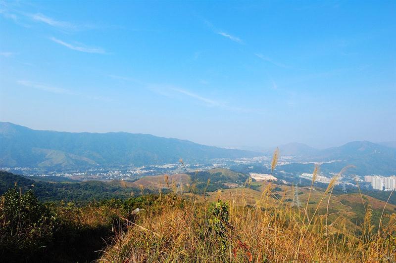 前望大刀屻山脈及林村谷