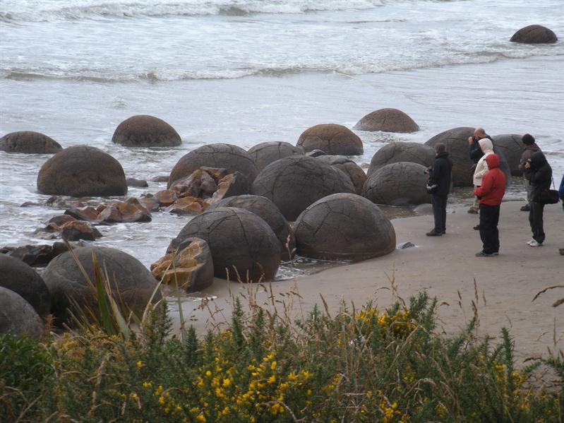 Lots of Moeraki boulders