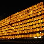 20100304龍山寺夜景Long San Temple
