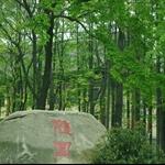 IMGP4662.jpg