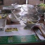 食草植物鍋
