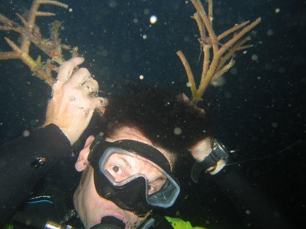 i didn't know rudolph was a diver!  merry christmas!