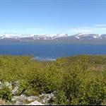 Schweden&Norwegen 2010 056.jpg