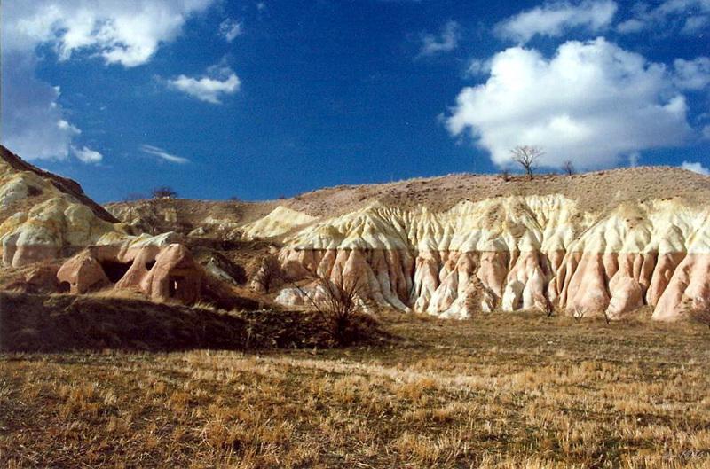 紅谷 rose valley