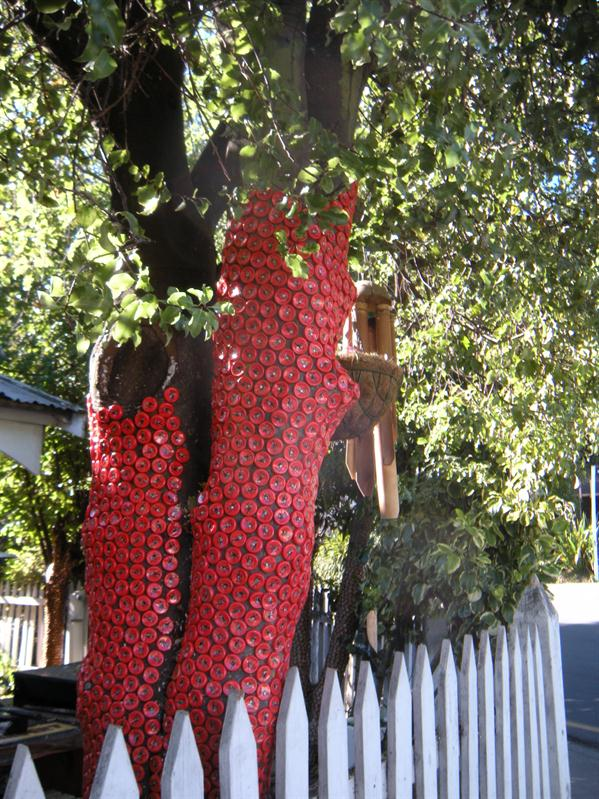 Interesting tree decorations in Akaroa