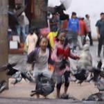 Nepal 2 019.JPG
