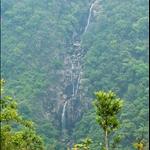 大輋嶺墩山脊東望牌額西坑 Pai Ngak West Stream