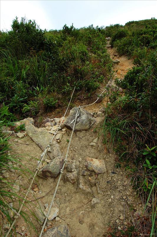 較斜的山徑位置有粗繩索架設借力