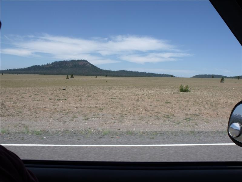 Pumice Field