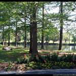 audubon park.jpg