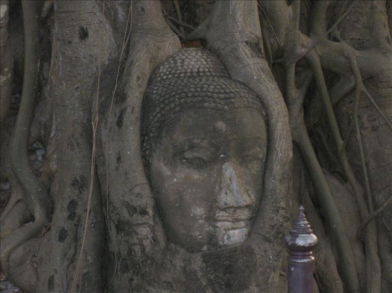 wooden buddha face in Ayutthaya