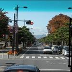 這裡是十和田市有名的道路   路樹為松樹   被選為日本十大公路之一