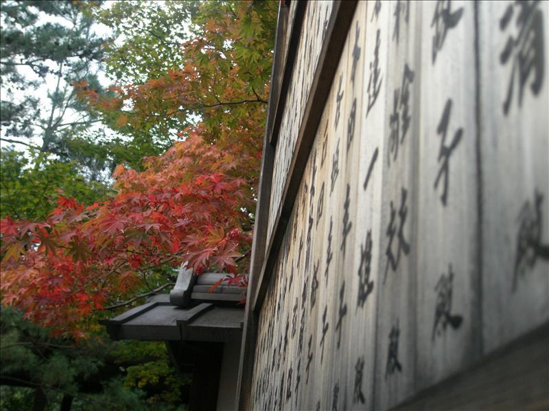 清涼寺庭園
