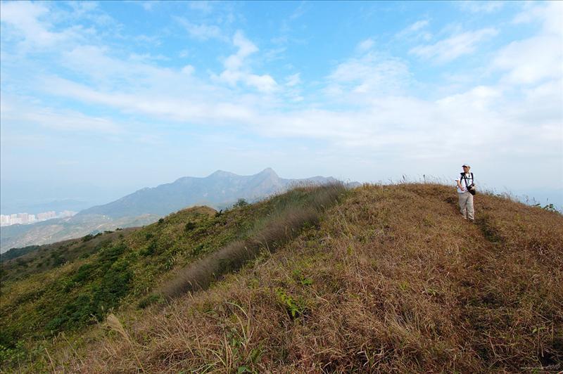 石芽山主峰 Shek Nga Shan 540m