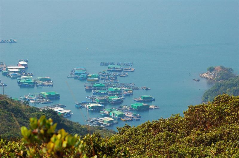 滿佈漁排的深灣仔 Sum Wan Tsai