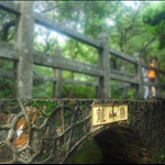 DSC_6473 龍山橋.jpg