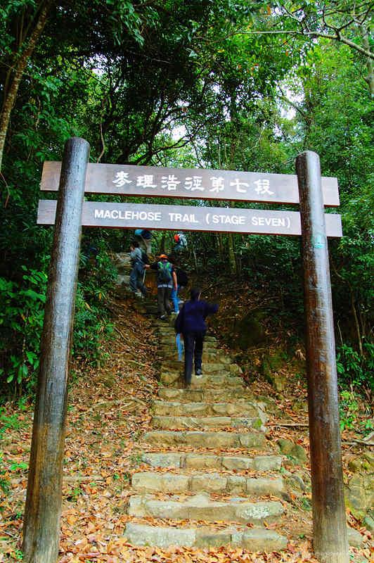 Stage 7 of the MacLehose Trail麥徑第七段