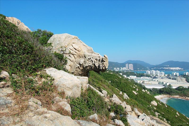 近賞犀牛石 Rhino Rock