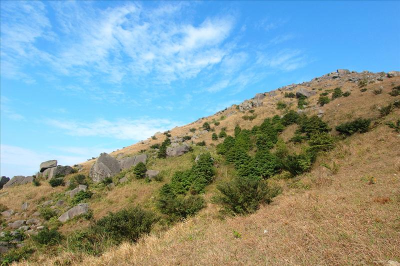 大帽山南坡 Tai Mo Shan South Slope