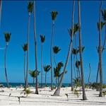 Punta Cana (Dec. 2005)