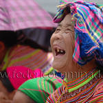 Flower Hmong, Bacha, province Lao Cai, region Sapa, Vietnam