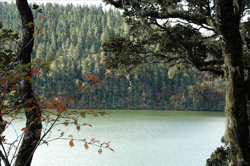 Bita Lake 碧塔海