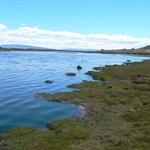 El Calafate Reserve