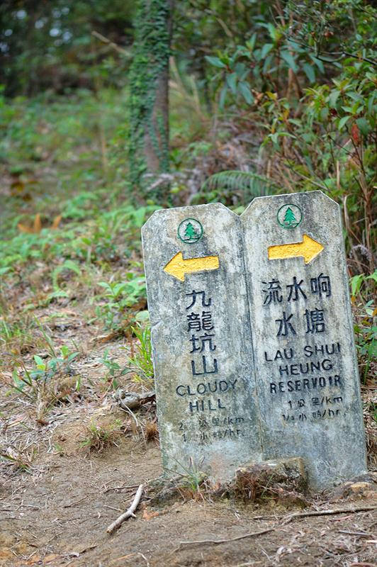 衛奕信徑第九段 Wilson Trail Stage 9