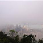 晨霧中的維多利亞港