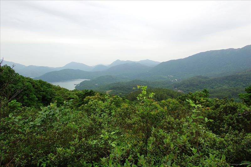 山徑左邊可眺望黃石碼頭的高塘口和東心其半島