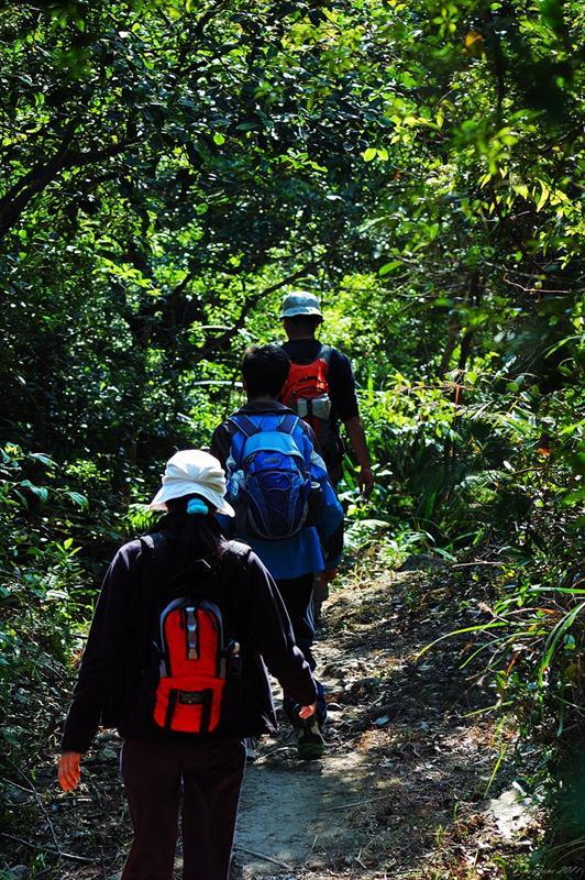 石坑古道 Shek Hang Ancient Trail