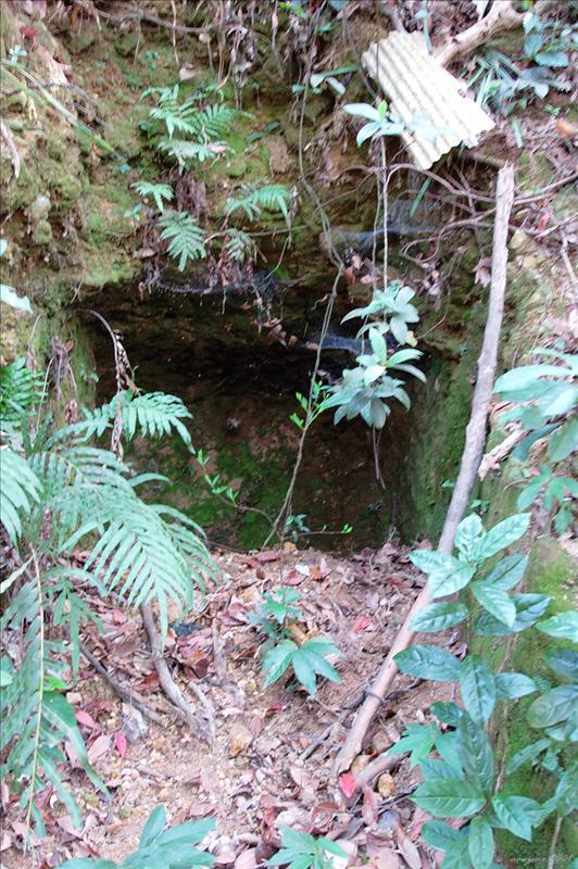 荒廢多時的廢礦洞Abandoned Mine
