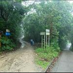 抵分岔位左路入石坑村及右往石坑圍
