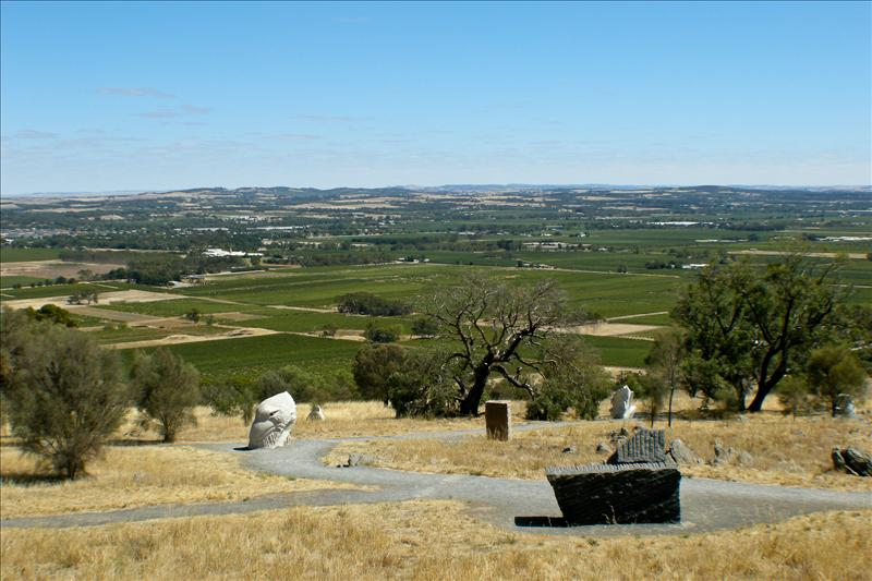 Tanunda is surrounded by vineyards