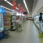 IMG00775-20101112-0841.jpg