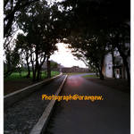 iphonetripphoto.jpg
