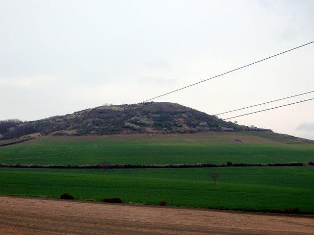 這個小山遠看是彩色的喔