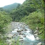 九寮溪步道 (16).JPG