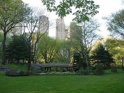 cnetral park