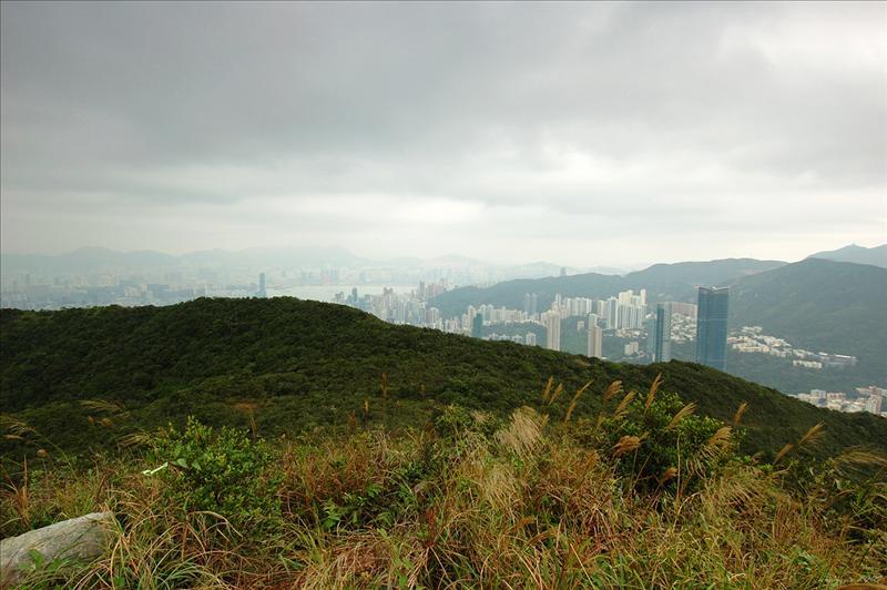 黃泥涌峽及跑馬地一帶的景色Wong Nai Chung Gap and Happy Valley