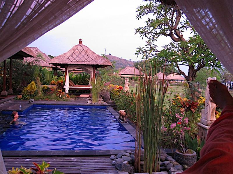 Enjoying the morning sunrise at our private pool at Amertha villa in Pemuteran.