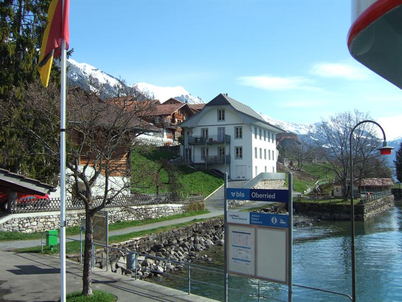 Lake Brienz - Oberried