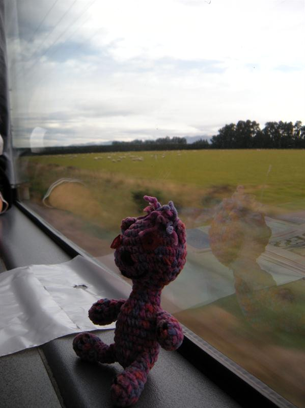 Andrea's teddy on the Transalpine train