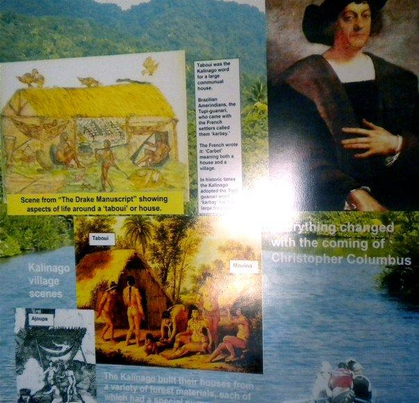 in historic art - Caribs are pictured greeting Columbus with fruit and parrots - they were friendly - their nature is gentle. But they will defend themselves and will not be taken advantage of - in this they are fierce