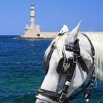 trip in Crete クレタ島の旅
