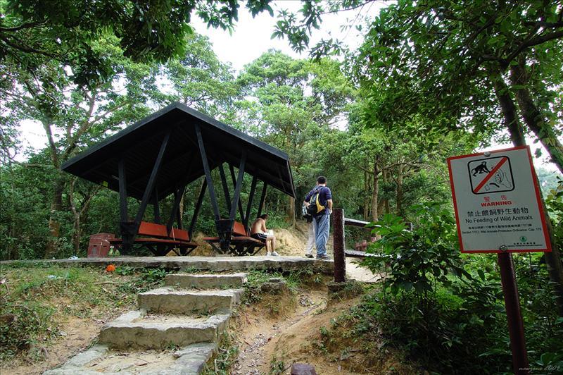 大窩坪坳 (楊莓坳) 休憩亭 Tai Wo Ping Au