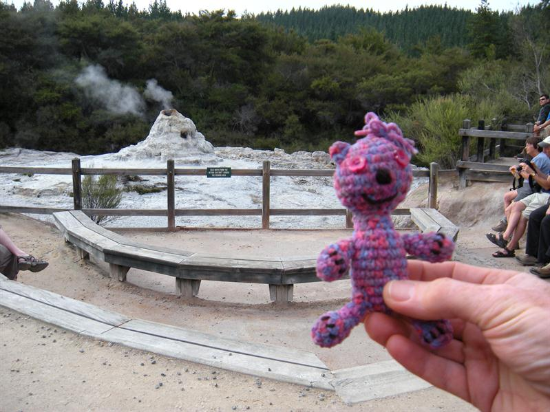 Andrea's teddy at the Lady Knox Geyser