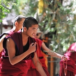 debating Monk at Sera monastery